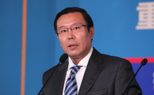 张新民:对外经济贸易大学教授