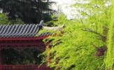 湖南大学EMBA首届创维杯羽毛球邀请赛圆满闭幕