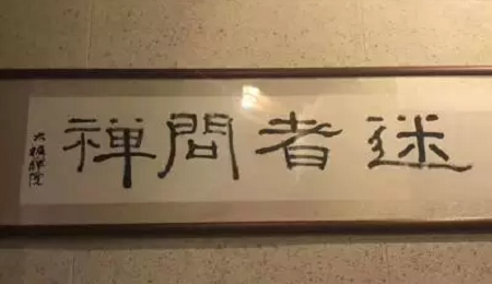 """浙江大学EMBA启真社走进""""密林深处""""的太极禅苑"""