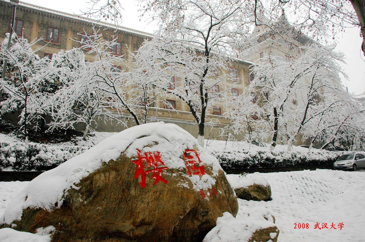 武汉大学樱园雪景