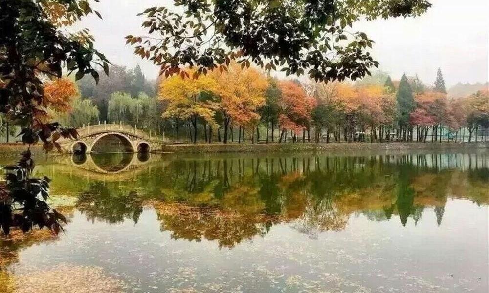 南京理工大学校园实景-