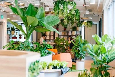 O2Work获得新加坡共享办公空间最高绿色评级认证