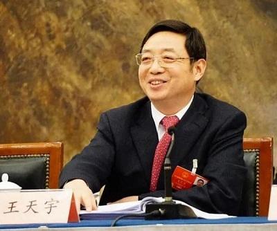 中国全国人大代表王天宇